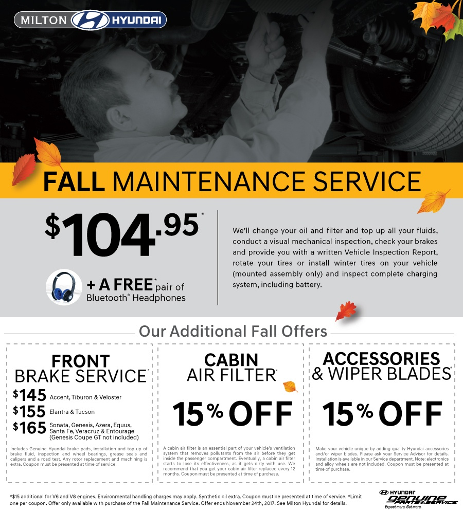 Fall Maintenance Service